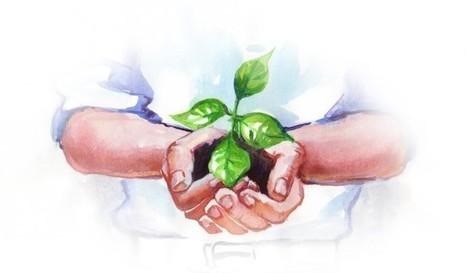 Ces startups qui réinventent l'Agriculture | Acteurs du Numériques | Scoop.it