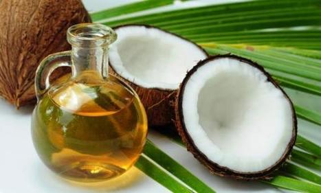 Coconut Oil Secret Free Download PDF   Bette Beeks   Scoop.it