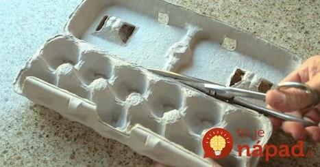 Tieto kartóny od vajec sú cennejšie ako sa zdá. Neuveríte, na čo všetko ich môžete použiť! | Domácnosť a bývanie | Scoop.it