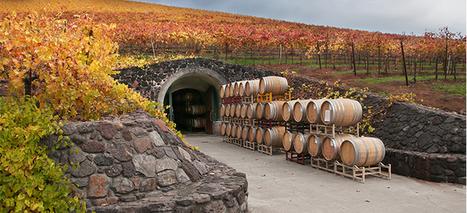 California Wineries CA | Business | Scoop.it