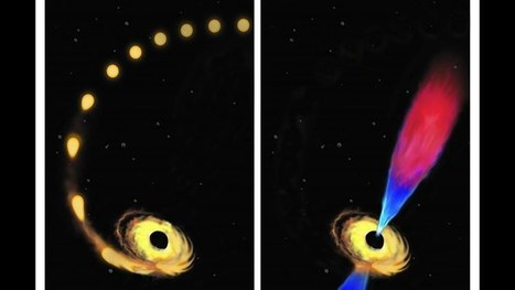 Scientists capture a black hole swallowing a star for the first time ever | Sustainable Futures | Scoop.it