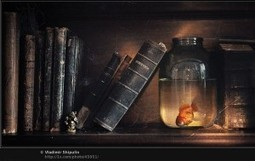40 Cool Examples of Still Life Photography | Everything Photographic | Scoop.it