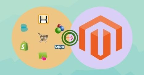 Want to migrate your existing ecommerce store to magento? | Web Application Development Company | Scoop.it