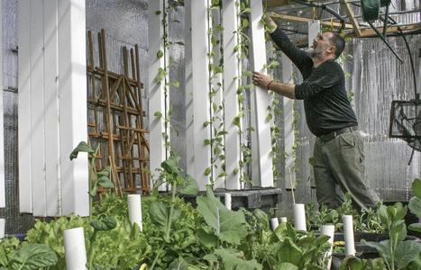 Misty Morning Farm awarded $10,000 community food grant | Vertical Farm - Food Factory | Scoop.it