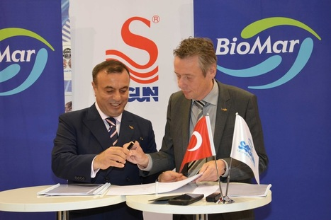 New joint Turkish feed company will focus on feed efficiency, technical service, and sustainability | News on the Fisheries and Aquaculture field | Scoop.it