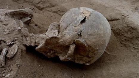 L'ADN révèle un chapitre inconnu de l'histoire de l'Homme | www.directmatin.fr | Aux origines | Scoop.it