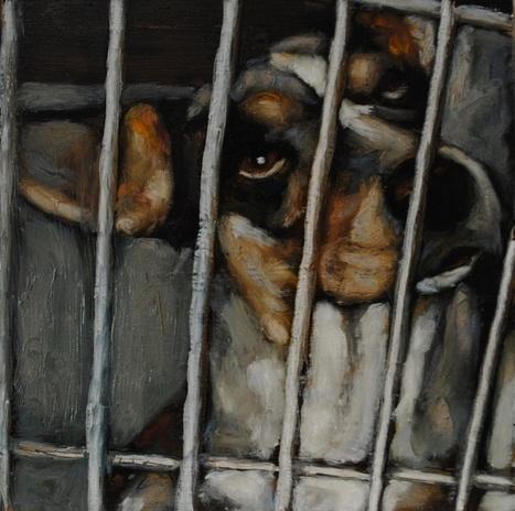Pinturas de los perros de albergues - Mark Barone | Mascotas | Scoop.it