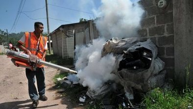 Honduras declares dengue emergency | Pollution and Human Health | Scoop.it