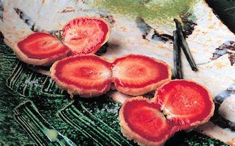 Papillon rouge, Hisayuki Takeuchi (photographie Nicolas Bertherat) 2003 | 物質と記憶 matière et mémoire | Scoop.it