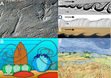 Study Reveals Why Life in Earth's Early Oceans Increased in Size   Earth and Enviormental Science   Scoop.it