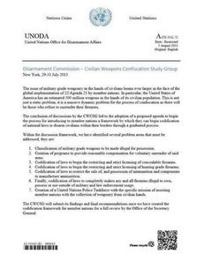 Purported U.N. disarmament document long on hysteria, short on provability   News You Can Use - NO PINKSLIME   Scoop.it
