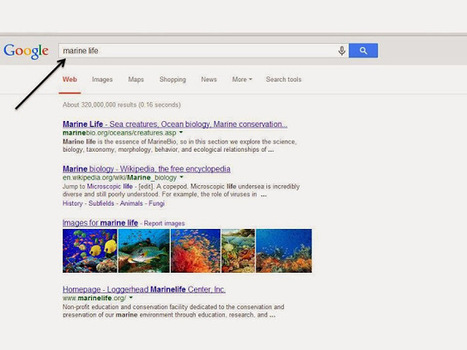 The Compelled Educator: Google Search by Reading Level | Library Ideas | Scoop.it