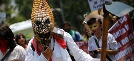 Le débat sur les OGM est parfait pour développer son esprit critique   Slate   Désinformation   Scoop.it