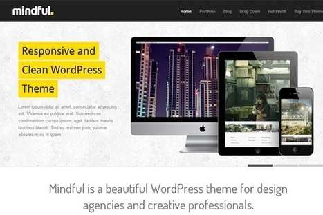 The Best Clean Responsive WordPress Premium Themes - DzineBlog.com | WordPresss | Scoop.it