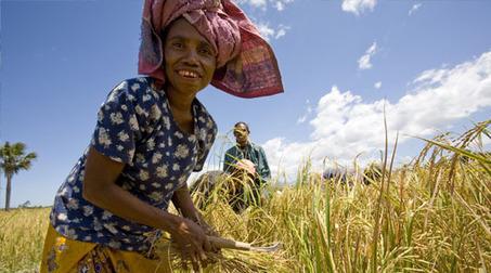 Explore   Oxfam Australia   Humanities   Scoop.it