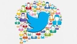 NetPublic » Lexique officiel Twitter : 61 mots à connaître pour maîtriser Twitter | François MAGNAN  Formateur Consultant | Scoop.it