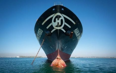 Fees rocket for collapsed cargo giant Hanjin's clients | EconMatters | Scoop.it