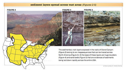 Transcontinental Rock Layers - Answers in Genesis | Geographic Information Sciences | Scoop.it