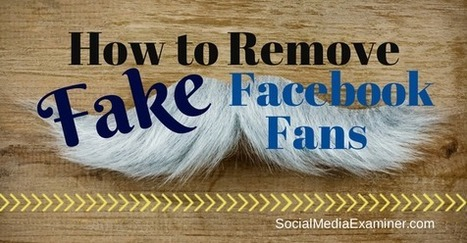 How to Remove Fake Facebook Fans | | Marketing & Webmarketing | Scoop.it