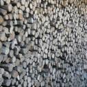 Biomass in Zero Carbon Britain: Breaking the Chain of Destruction? | Zero Carbon Living Laboratory | Scoop.it