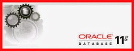Parallel Branch -Online Education Portal : How to Learn Oracle SQL 11g Online | Online Education | Scoop.it