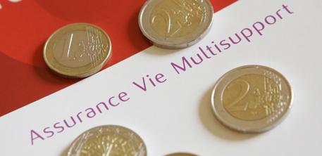 Assurance vie : les taux 2013 des fonds en euros de plus de 250 contrats | Assurance vie, toute l'actualité | Scoop.it
