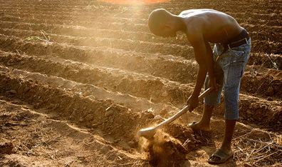 Low-cost climate adaptation can help African farmers - UN | Geography | Scoop.it