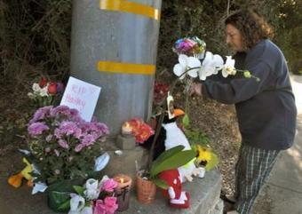 Novato, others settle lawsuit over girl killed by SUV while riding her bike home from school | profile | Scoop.it