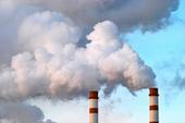 Pollution - les plantes qui purifient les sols pollués | Les initiatives du changement | Scoop.it