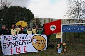 Brésil - Syngenta condamnée suite à la mort d'un paysan sans terre | Questions de développement ... | Scoop.it