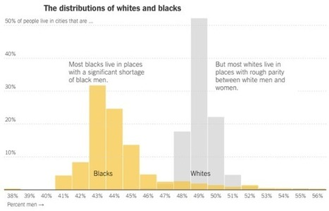 Far fewer black men than black women | Sustainable Futures | Scoop.it