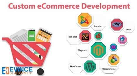 Choosing the Right eCommerce Development Provider | eCommerce Websites, Software Development Company | Scoop.it