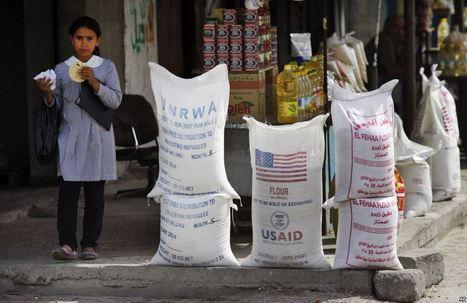 Hambre: ¿Dinero o comida? | Educación y Cultura del Esfuerzo | Scoop.it