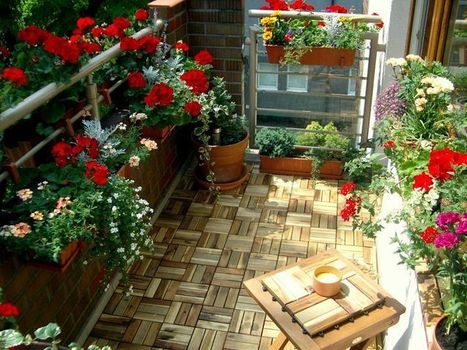 18 Essential Balcony Gardening Tips to Know | Gardening | Scoop.it