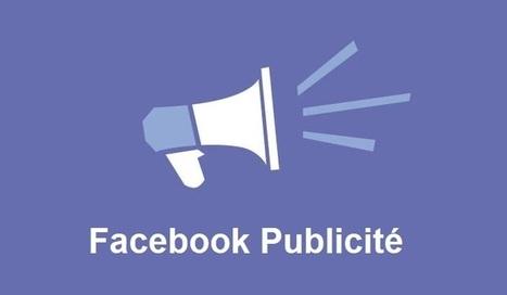 Facebook Ads absorbe 68% des revenus publicitaires de tous les réseaux sociaux | Référencement internet | Scoop.it