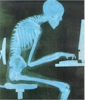 Getting It Straight: Posture and its Influence on Learning and Memory | ciberpocket | Scoop.it