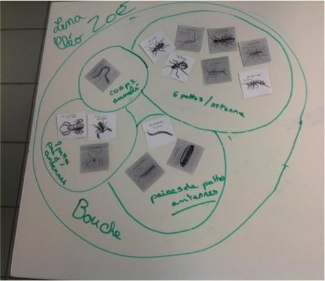 Tablette à l'école #6 : la tablette, un appareil photographique | Tablettes numériques | Scoop.it