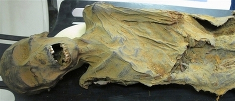 Mummy study shows clogged arteries are nothing new   Ancient Egypt and Nubia   Scoop.it