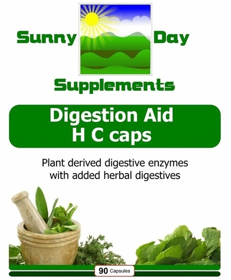 Digestion Aid H C caps | Sunny Day Herbal Supplements, Buy Now & Jesus Saves | Scoop.it