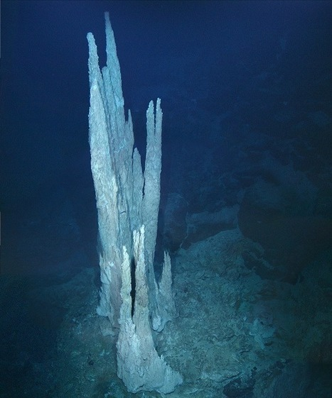 Origin of life on Earth may have come from underwater electric chimneys - Siliconrepublic.com | ScubaObsessed | Scoop.it