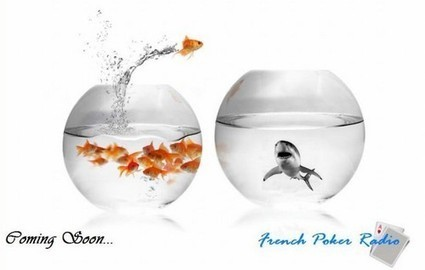 Poker | Poker en ligne | MadeInPoker - Après la Belgique, la Poker Radio débarque en France ! | Actualité Poker | Scoop.it