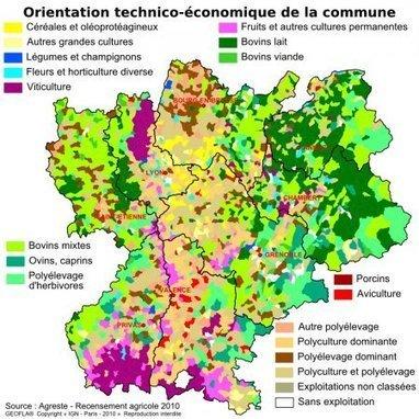 Ministère de l'agriculture, de l'agroalimentaire et de la forêt - Agreste - La statistique, l'évaluation et la prospective agricole - Rhône-Alpes | Paysage, terroir et valorisation du vin | Scoop.it