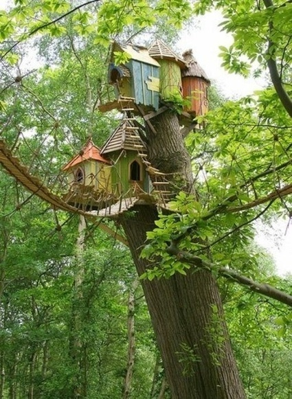 Tree houses | FASHION-BEAUTY-CLOTHES-GIRL | Scoop.it