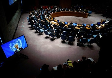 Israel's UN envoy lashes out at Security Council for silence in wake of deadly terror attacks | NGOs in Human Rights, Peace and Development | Scoop.it