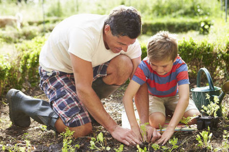 Teaching kids basics of gardening is important | School Gardening Resources | Scoop.it