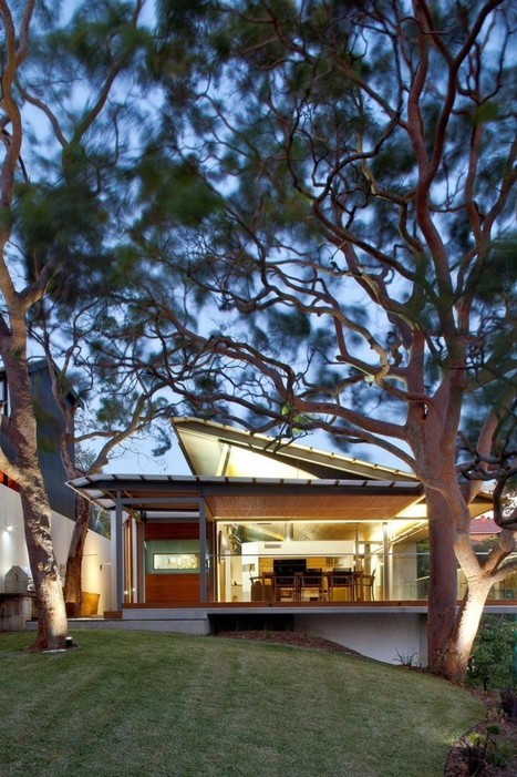 Australia's Angophora House by Richard Cole Architecture | PROYECTO ESPACIOS | Scoop.it