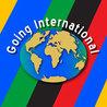 Engaging Internationally