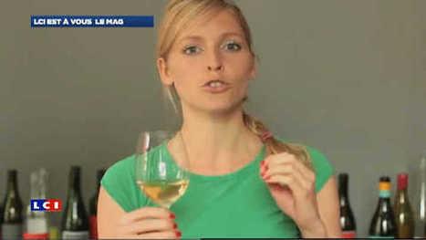 LCI est @ vous le mag 2/2 -  La glouglousphère | Vin, blogs, réseaux sociaux, partage, communauté Vinocamp France | Scoop.it