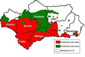 The Lingua File: Do Spaniards Lisp? | EL ESPAÑOL DE AMERICA | Scoop.it