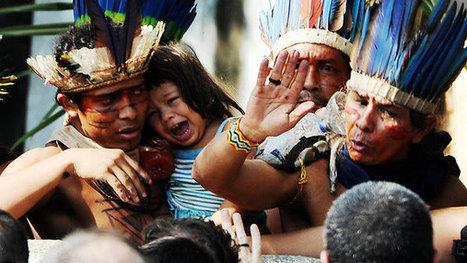 Comunidade Indígena (Maracanã) | Biologia - Escola da Vila | Scoop.it
